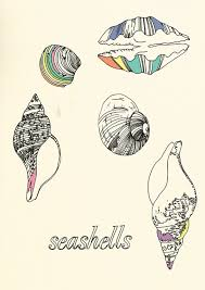 71 best zentangle shells images on pinterest mandalas artworks