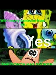 The Conch Has Spoken Meme - 42 best zerrie 3 images on pinterest celebs famous people and one
