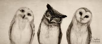 the owl u0027s three u201d i added a snowy owl and a barn isaiah