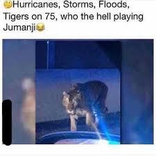 Jumanji Meme - dopl3r com memes hurricanes storms floods tigers on 75 who