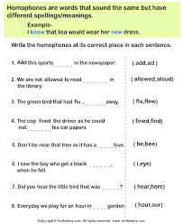 fill in the blanks with correct homophone worksheet turtle diary