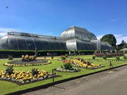 kew royal botanic garden and greenhouses daily joséphine