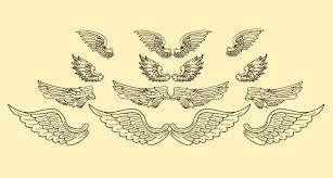 vector wings design designers revolution premium vector stock