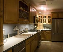 Modern Kitchen Storage Ideas Beautiful Indian Kitchen Design Ideas Is An Example Of Perfect Use