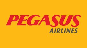 frankfurt airport pegasus airlines