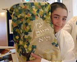 bar mitzvah in israel bar mitzvah in israel it s the real deal