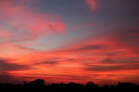 Sunset Orange by Orange Sky Sunset Public Domain Pictures