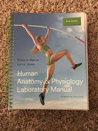 Laboratory Manual For Anatomy And Physiology 5th Edition Human Anatomy And Physiology Laboratory Manual Main Version 11th