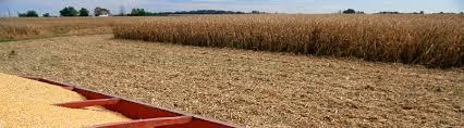 quality tractor u0026 equipment