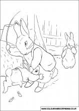 peter rabbit colouring pages 29 preschool printing activities