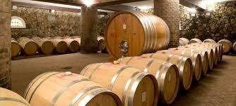 the underground wine cellar ronchi di manzano winery