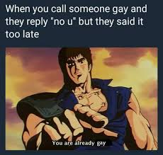 Why You No Reply Meme - when you call someone gay and they reply no u but they said it too