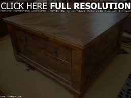 coffee table storage full image for square shelves trunk coffee