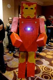 minecraft costume tami morin show joe jaime u0027s 11th bday