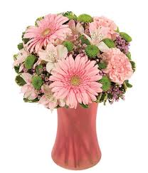 gerbera bouquet of pink bouquet at from you flowers