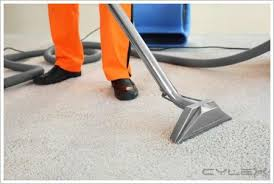 chion carpet cleaners denton tx blitz