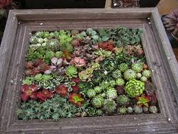 unique garden ideas bombadeagua me