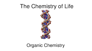 Chemistry In Anatomy And Physiology Organic Chemistry Review For Anatomy And Physiology Students