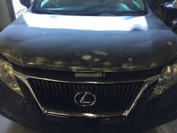 2011 lexus rx 350 u2013 body craft oc