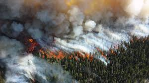 yellowstone national park staff manage multiple fires with