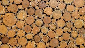 texture wood log wooden 2048x1152