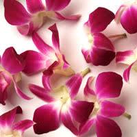 hawaiian leis hawaiian leis from hawaii flower