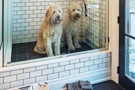 Pet Friendly House Plans | pet friendly home design time to build