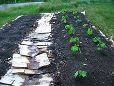 How To Start A Garden Bed Building Soil With Lasagna Gardening Composting Gardens And