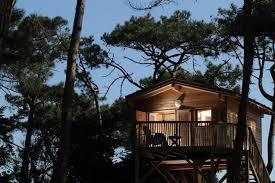 chambre d hote lacanau cabane tchanquee a lacanau gironde 928538 abritel
