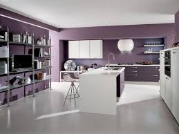 cuisine pourpre peinture murale cuisine 50 exemples design bi et tricolores