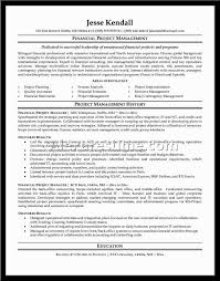Professional Resume Examples The Best Resume by Best Resume Templates Madinbelgrade