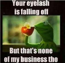 Kermit Meme My Face When - kermit meme funny pinterest kermit meme and laughter