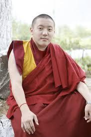30 best khyentse yangsi rinpoche born 1993 images on pinterest