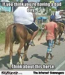 Having A Bad Day Meme - if you think you re having a bad day horse meme pmslweb