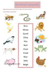 image result for sound of animals worksheet jungle theme