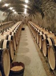Burgundy Wine Cellar - 13 best vinos bodegad images on pinterest wines wine cellars
