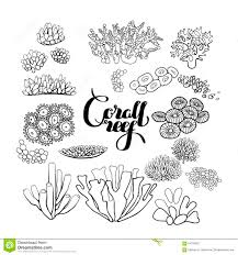 printable animal coral coloring pages for kids coloringbooks7 com