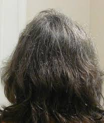 light chestnut brown naturtint naturtint permanent hair color 5n light chestnut brown 5 28 fl oz