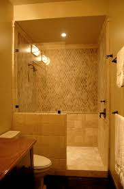 Small Bathroom Walk In Shower Small Bathroom Showers House Decorations