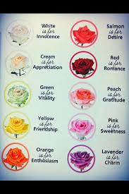 wedding flowers meaning color of roses and their meanings for the symbolic language of