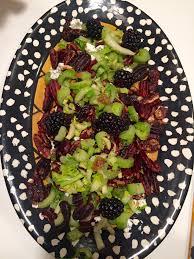 barefoot contessa u0027s celery u0026 parmesan salad u2013 the dinna ladies