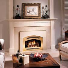 inexpensive fireplace inserts home decorating interior design