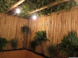 bamboo fencing rolls carbs u2014 best home decor ideas innovative