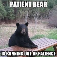 Running Bear Meme - patient bear is running out of patience patient bear meme
