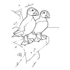 coloring page for toddlers top 10 puffin coloring pages for toddlers
