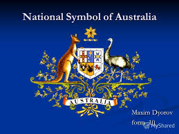 презентация на тему national symbol of australia maxim dyorov