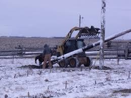 poles set for hops trellis callens honey farm