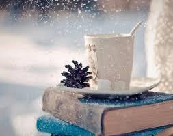 book winter book lover book