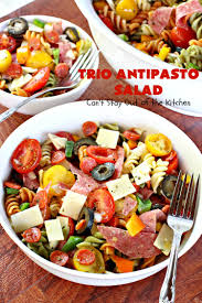 Homemade Pasta Salad by Trio Antipasto Salad Can U0027t Stay Out Of The Kitchen