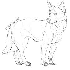 free australian cattle dog lineart by red solace on deviantart